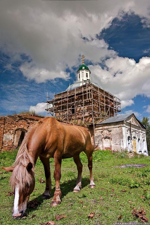Селец. Церковь Сошествия Святого Духа (июль 2009)