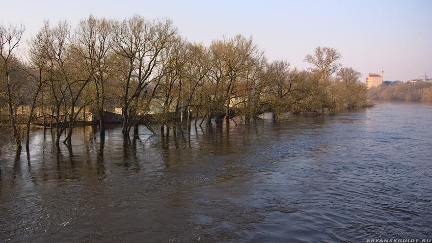 Разлив в Брянске
