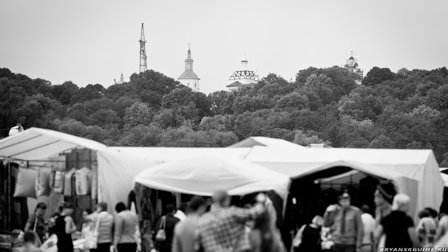 Свенская ярмарка 2012 (20)