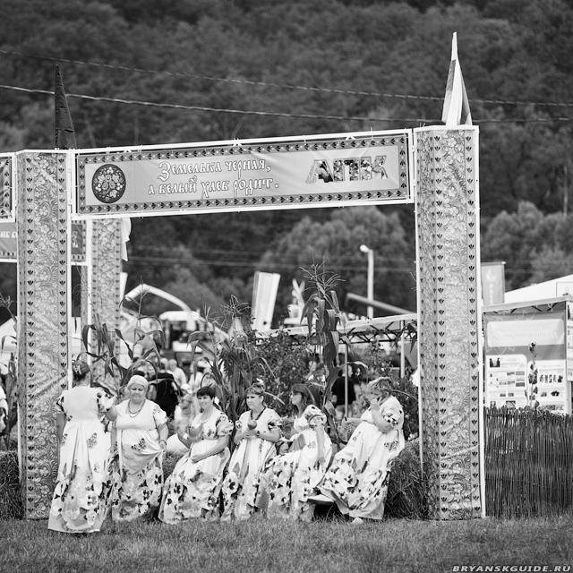 Свенская ярмарка 2012 (13)