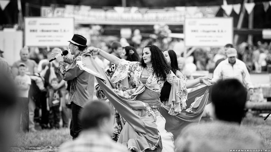 Свенская ярмарка 2012 (10)