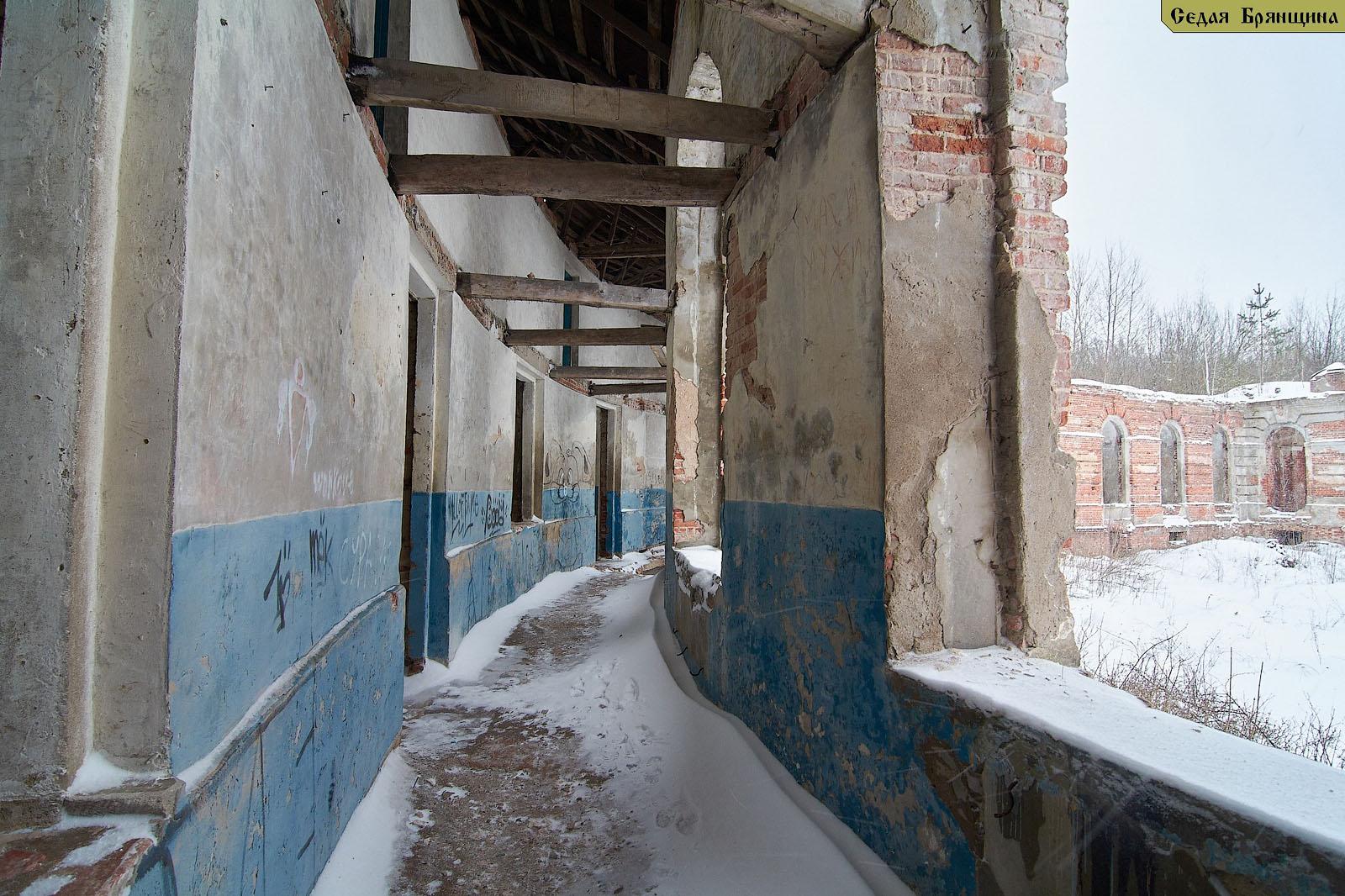Ляличи. Усадьба Завадовского (январь 2017)